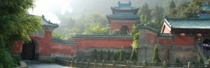 cropped-cropped-tempel1.jpg